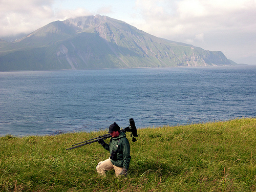 When does a birder become aware that their birding cannot be complete without a trip to Alaska?  photo by Seavamirum
