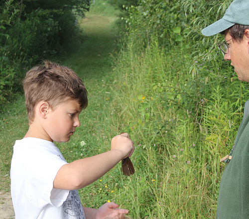 A young birder releases a banded bird at the North Branch Nature Center.