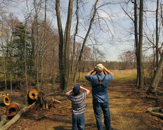 The bare trees made spotting birds easy.  Here Dane (l) and Robb search for a house finch up ahead.