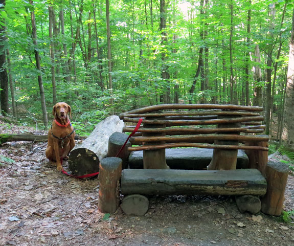 The trail was rebuilt by Youth Conservation Corps teams who also built some clever resting spots like this one.