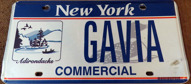 Ginny from upstate NY told me that she wanted a Loon plate so she used Gavia, the genus to which the loons belong.