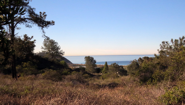 You get some nice views of the ocean from the upper trails. The Pacific Coast Highway is in the distance.